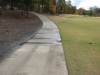 Sheet flow across cart path