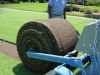 rolling sod - side view