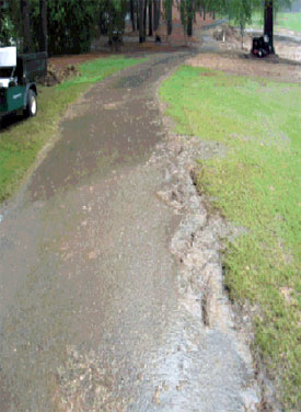 A problem easily solved with curbing and channel drains.